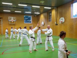 Karate marathon 2014 - jo training 1