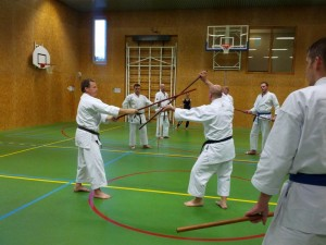 Karate marathon 2014-jo-training-13