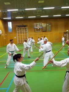 Karate marathon 2014-jo-training-15