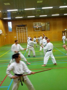 Karate marathon 2014-jo-training-16