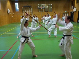 Karate marathon 2014-jo-training-17