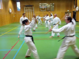 Karate marathon 2014-jo-training-18