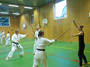 Karate marathon 2014-jo-training-2