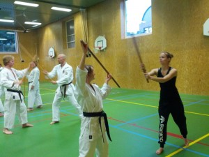 Karate marathon 2014-jo-training-3