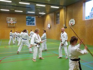 Karate marathon 2014-jo-training-4