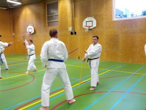 Karate marathon 2014-jo-training-7