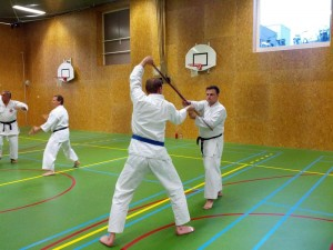 Karate marathon 2014-jo-training-8