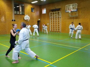 Karate marathon 2014 - karatetraining 01