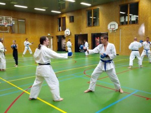 Karate marathon 2014 - karatetraining 04