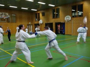 Karate marathon 2014 - karatetraining 05