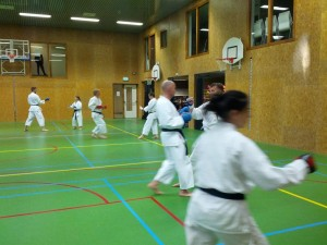 Karate marathon 2014 - karatetraining 07