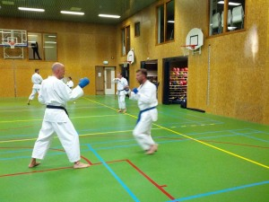 Karate marathon 2014 - karatetraining 08