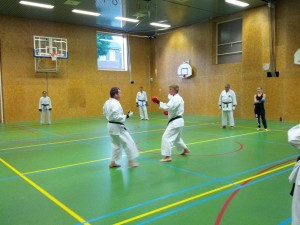 Karate marathon 2014 - karatetraining 09