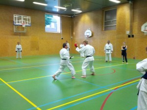 Karate marathon 2014 - karatetraining 10