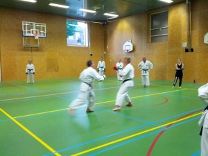 Karate marathon 2014 - karatetraining 11