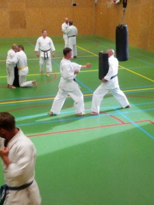 Karate marathon 2014 - karatetraining 12