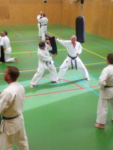 Karate marathon 2014 - karatetraining 13