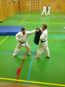 Karate marathon 2014 - karatetraining 14