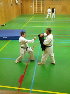 Karate marathon 2014 - karatetraining 15