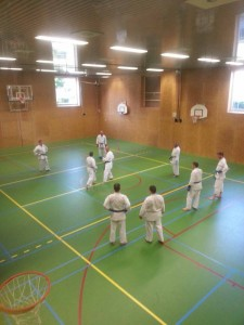 Karate marathon 2014 - kumite training 1