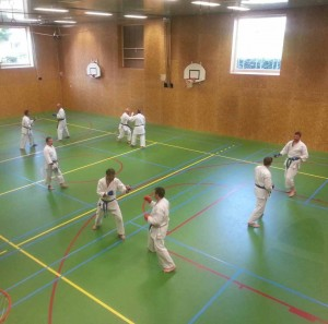 Karate marathon 2014 - kumite training 2