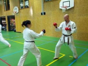 Karate marathon 2014 - kumite training 3